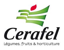 logo Cerafel
